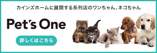 カインズホームに展開する系列店のワンちゃん、ネコちゃん